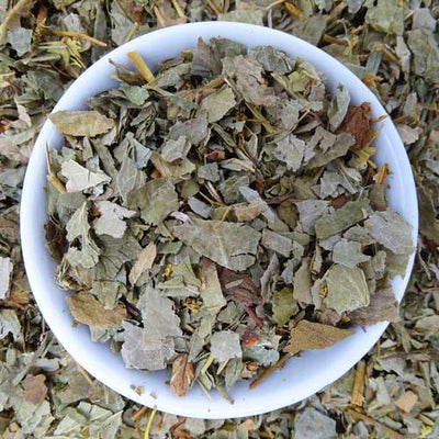 Lady's Mantle Tea, Herbal Tea Tea Life