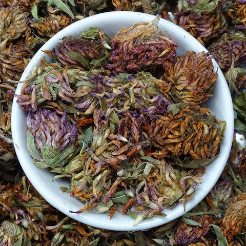 Red Clover Tea, Herbal Tea Tea Life