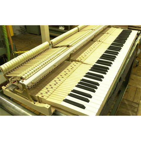 Acoustic Piano Action