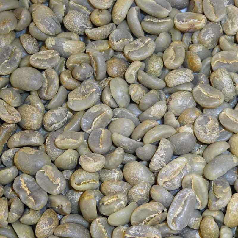 Fair Trade Organic Colombian Green Beans-Huila Excelso