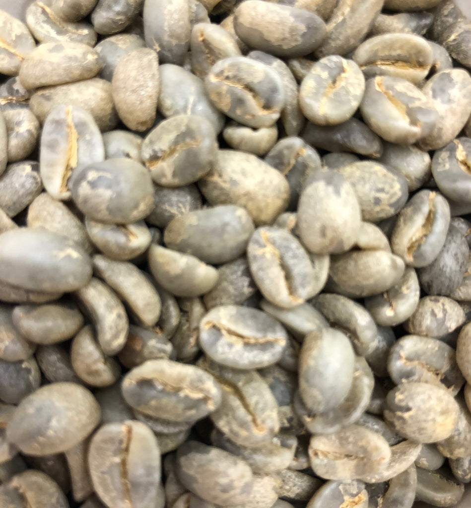 Guatemalan Geisha Green Beans-San Jose Estate