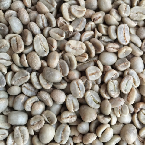 Fair Trade, Organic Honduran Marcala Green Beans