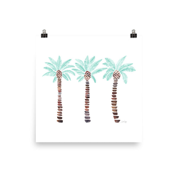 Mediterranean Palm Tree - Mint