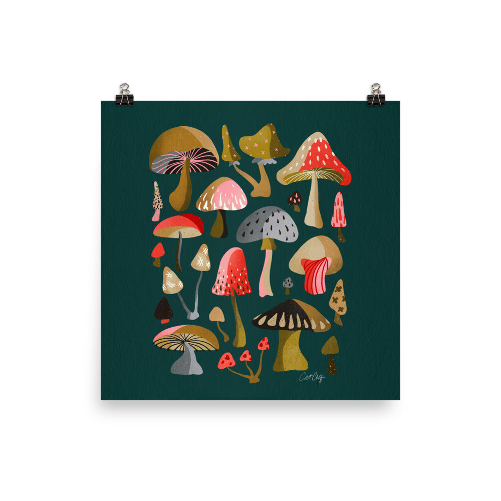 Mushroom Collection - Teal