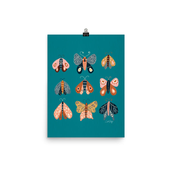 Moth Specimens - Teal