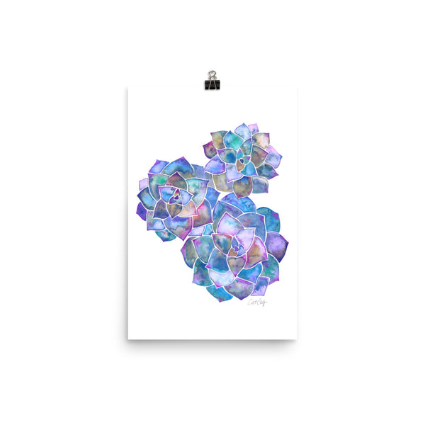 Rosette Succulents – Mermaid Palette • Art Print
