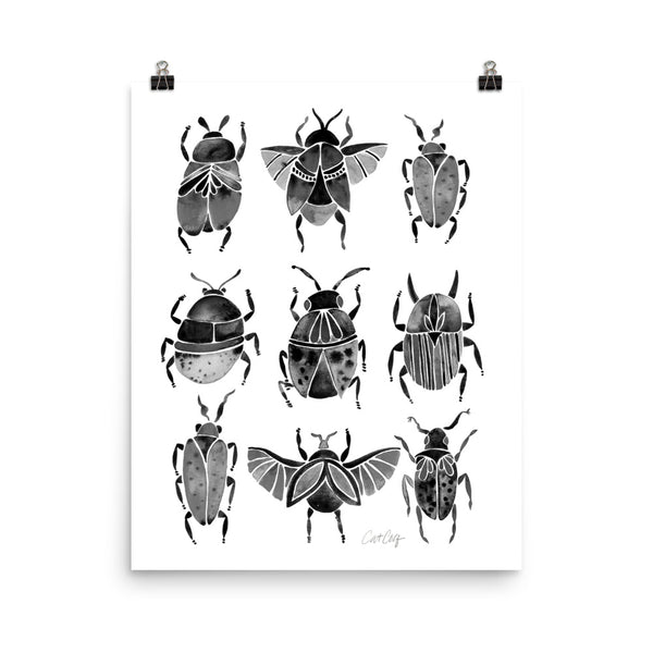 Beetle Collection - Black