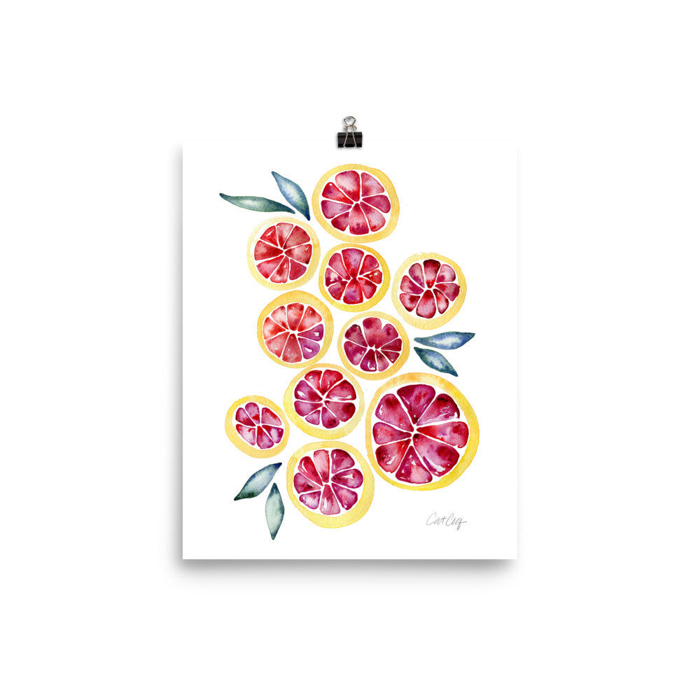 Grapefruit Slices • Art Print