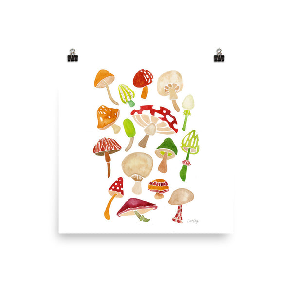 Mushroom Collection • Art Print