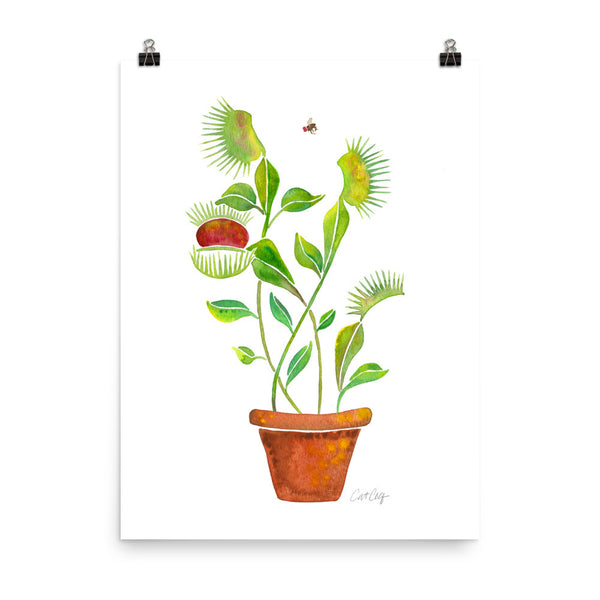Venus Fly Trap • Art Print