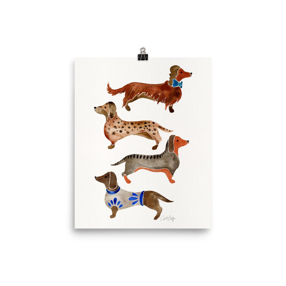 Dachshunds – White Background • Art Print