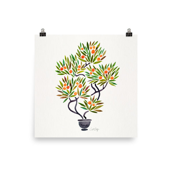 Bonsai Fruit Tree – Little Oranges • Art Print