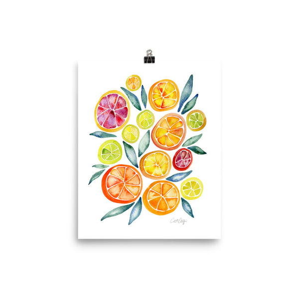 Citrus Slices • Art Print