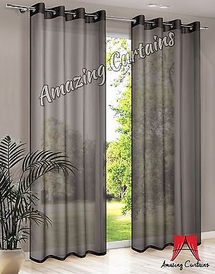 Plain Voile Curtain Panel - Black - AmazingCurtains