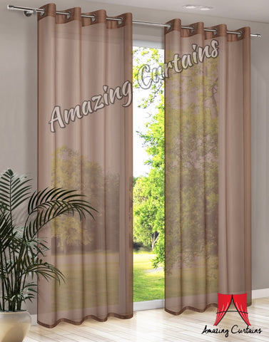 Plain Voile Curtain Panel - Brown - AmazingCurtains
