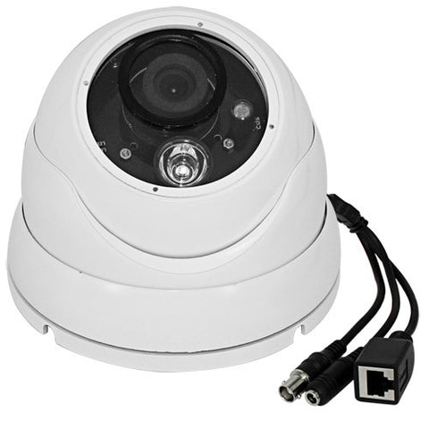 2.0 Megapixel Infrared Night Vision Waterpfoof IP Dome Camera (H.264, 16 Areas Motion Detection, IR), Australia Power Plug