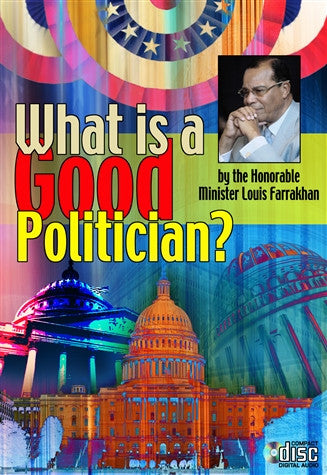 What Is A Good Politician?