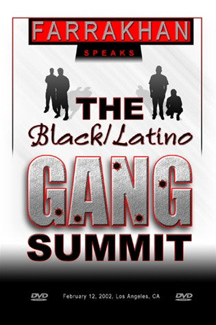 Black/Latino Gang Summit (DVD)
