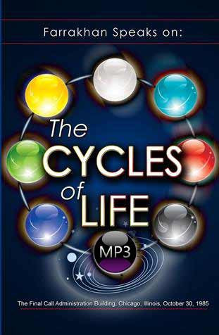 The Cycles Of Life