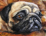 Custom needle-felted wool pug pet portrait by Sarah Vaci