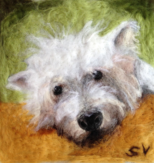 Westie pet dog portrait by Sarah Vaci