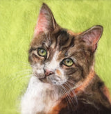 Personalised pet cat portrait pet lover gift by artist Sarah Vaci