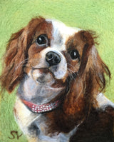 Personalized custom king charles spaniel portrait by Sarah Vaci