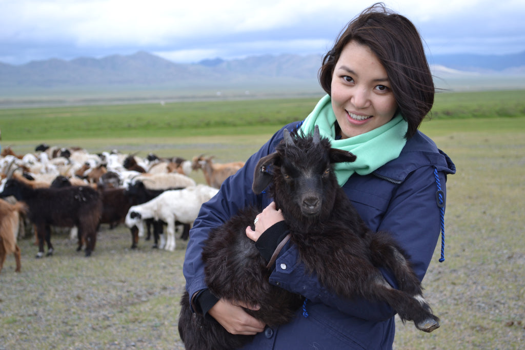 Global brands and manufacturers show interest in Mongolian cashmere