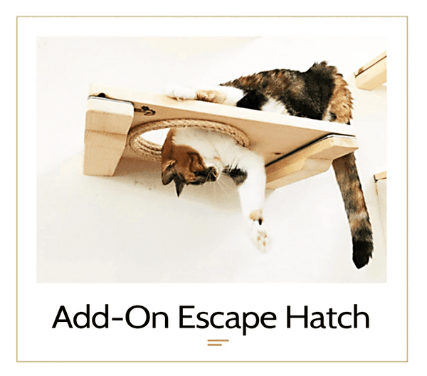 The Cat Mod - Escape Hatch