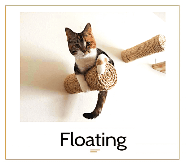 The Cat Mod - Floating