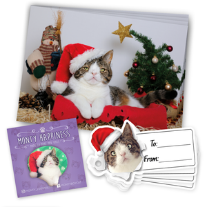 Monty Christmas Pack - Merchandise - Monty Boy