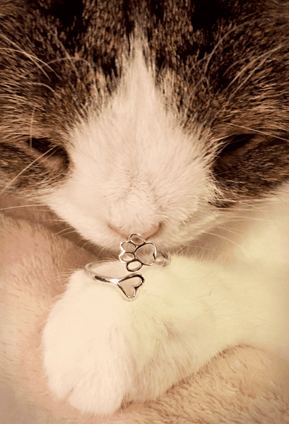 PAWsome Love - Cat Ring (Silver)