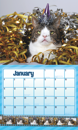 Monty's Forever Wall Calendar - Home/Decor - Monty Boy