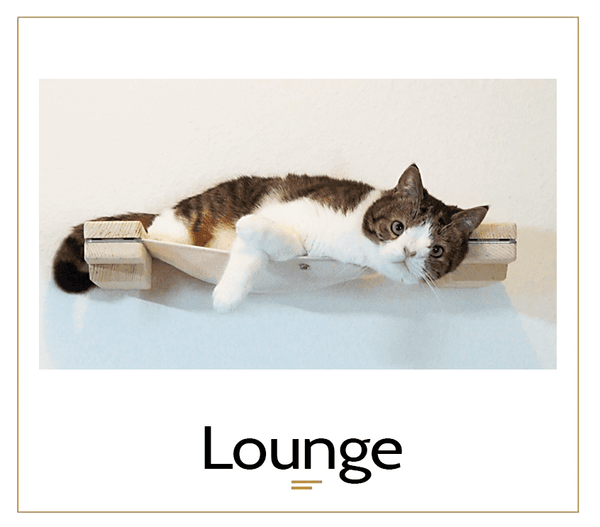 The Cat Mod - Lounge