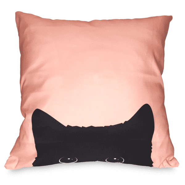 Peek A Boo Cat Toss Pillow Case - Merchandise - Monty Boy