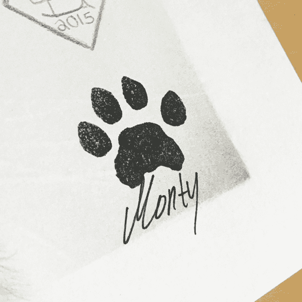 Signed poster of Monty - Home/Decor - Monty Boy