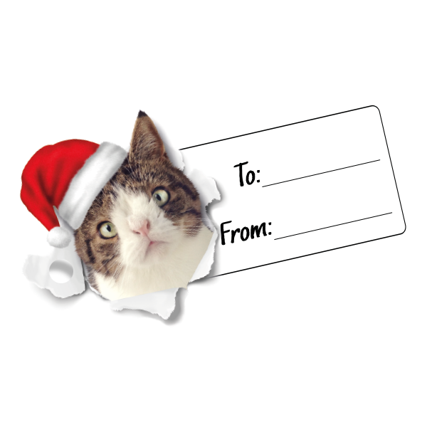 Christmas Gift Tag - Accessories - Monty Boy