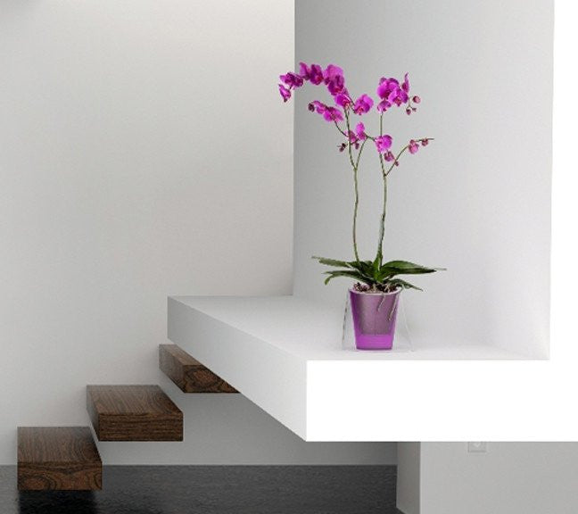 LINA Orchid Planter - AUBERGINE
