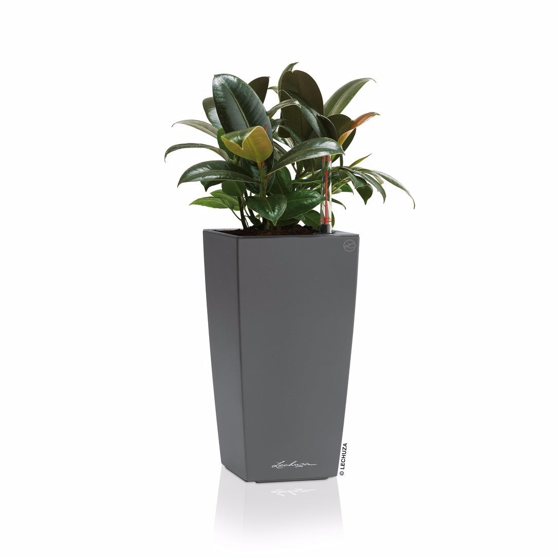 MINI CUBI Planter