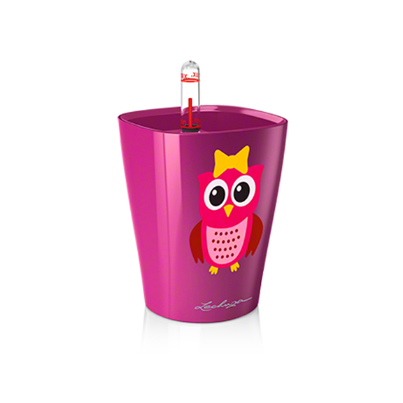 MINI DELTINI LITTLE OWL - FUCHSIA