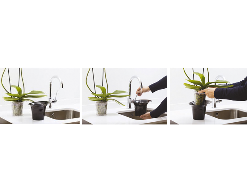 ADEL Orchid Planter - TRANSPARENT