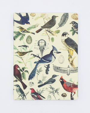Ornithology: Birds Softcover - Dot Grid