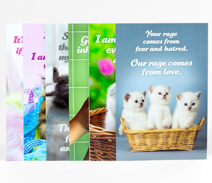 Social Justice Kittens Postcard Set of 6 - Volume 4