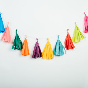 Kitchen Sink (All Colors) Tissue Tassel Banner