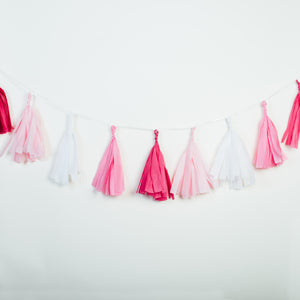 All Pink Everything Tissue Tassel Banner