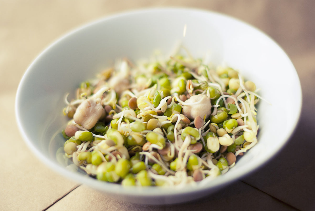 Sprouted Grains and Nutrition