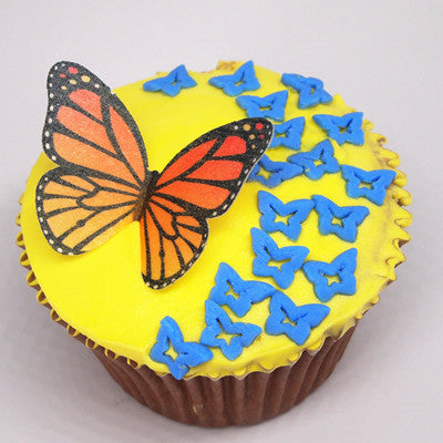 Natural Rainbow Gluten GMO Nuts Dairy Soy Free Confetti Butterfly