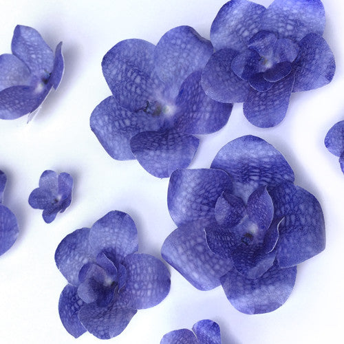 311 DIY 3D Edible Wafer Pre Cut  Flower