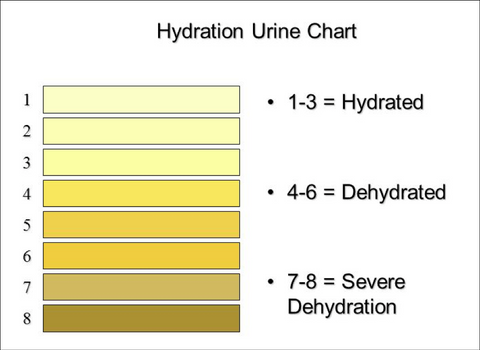 Picture of hydration urine chart