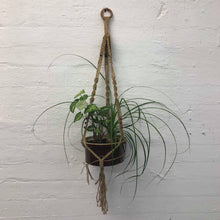 Macrame Planter Workshop